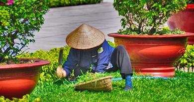 Tukang kebun menabung di BTPN