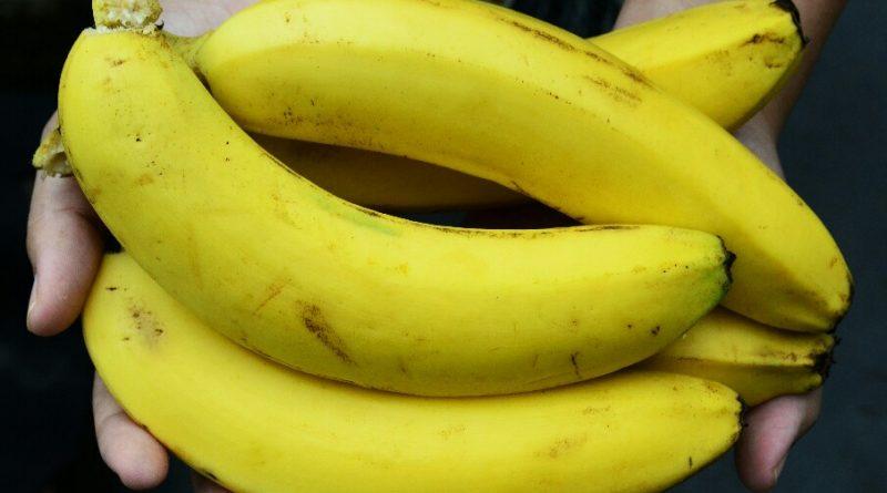 makanan tinggi kalori yang mengandung serat