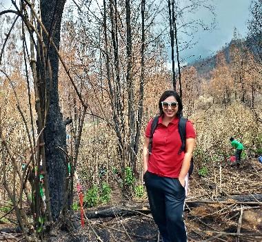 pekestarian lingkungan di Taman Wisata Kawah Ijen