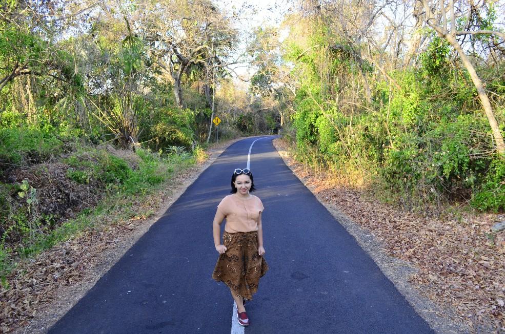Hutan Taman Nasional Baluran X Vicky Laurentina