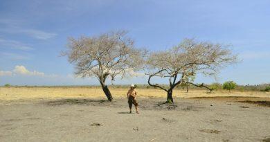 Surga Keanekaragaman Hayati di Taman Nasional Baluran