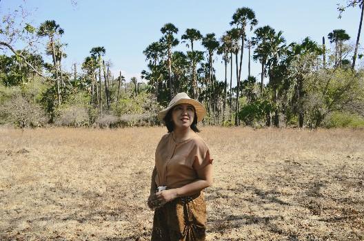 Vicky Laurentina dan pohon gebang di Taman Nasional Baluran